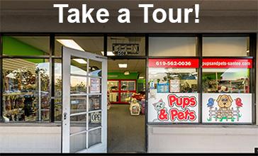store-tour