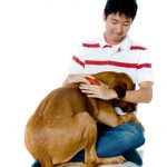 dog rescue in San Diego